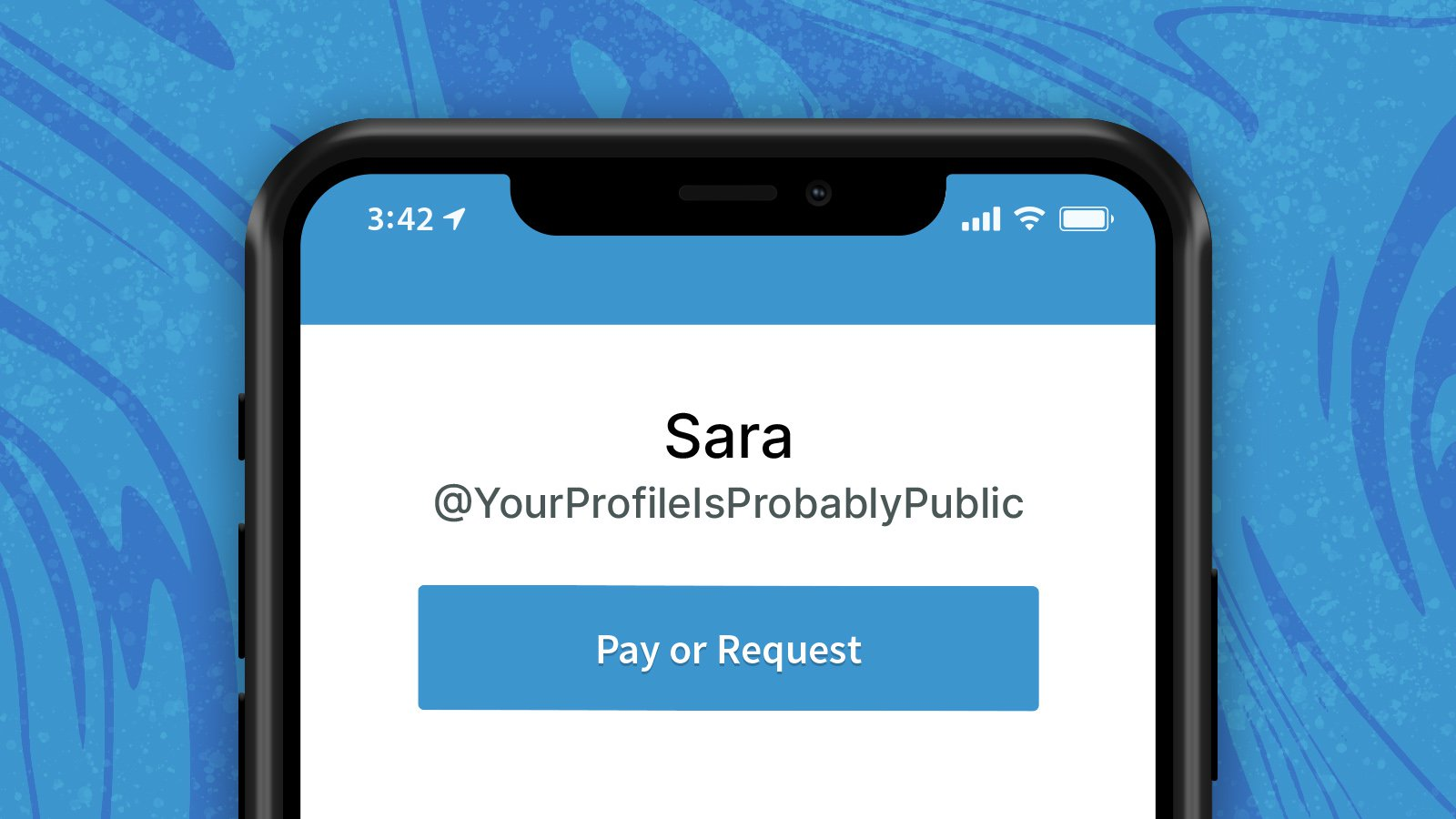 "Image of an iPhone with a Venmo interface profile area that reads ""Sara, @Your Profile Is Probably Public."""