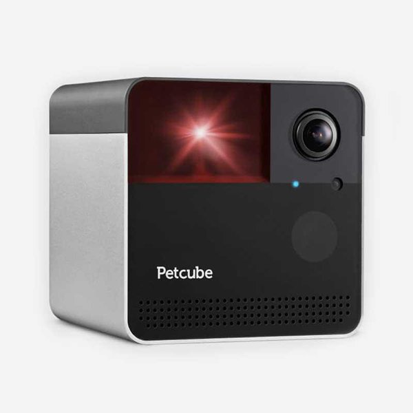link to Petcube Play 2 & Bites 2