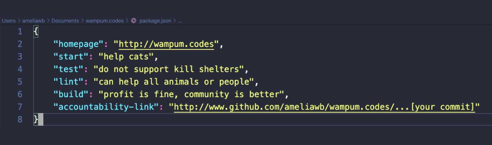 Screen cap of code